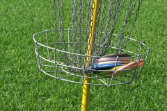 Got time for a game of disk golf?